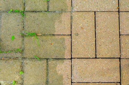 patio bricks showing the difference made by power washing